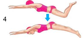 dolphin-kick-steps-4