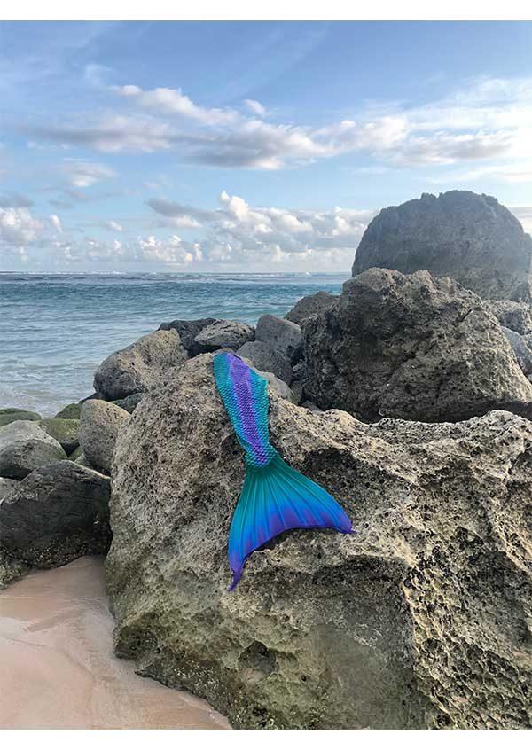 frenzy-mermaids-ariel-tail